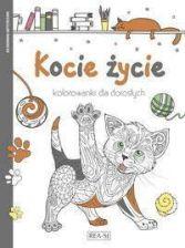 Kolorowanka Kot Beletrystyka Ceneopl
