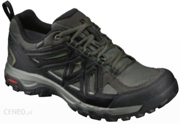 Buty trekkingowe męskie Evasion 2 GTX Salomon