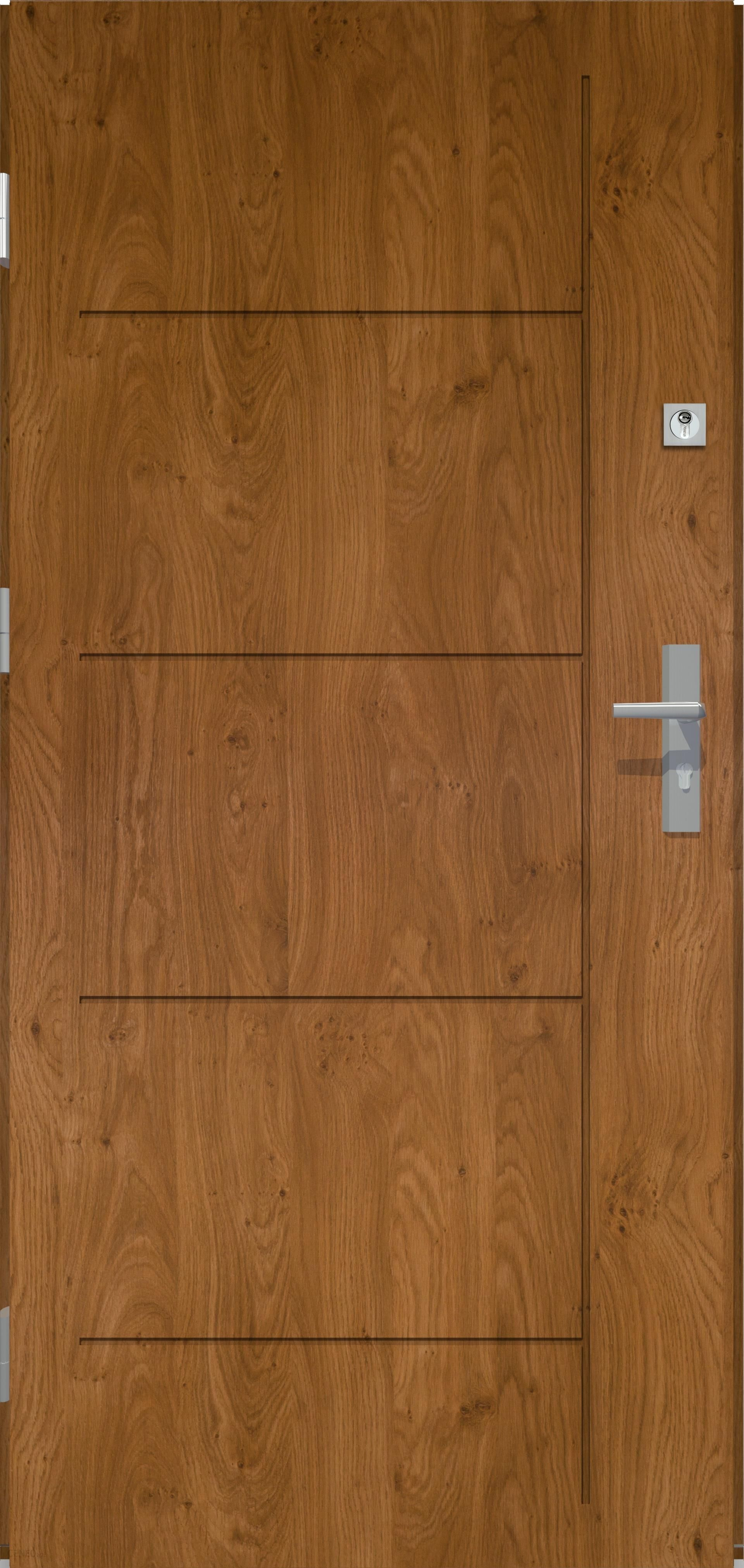 Radex Drzwi Zewnętrzne-Pełne Linea - Winchester