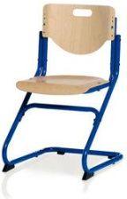 Kettler Krzesło Chair Plus (Niebieski Buk Ceny i opinie Ceneo.pl
