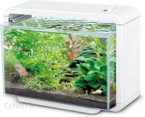 Akwarium 15l Hailea E15x Oświetlenie Led Filtr