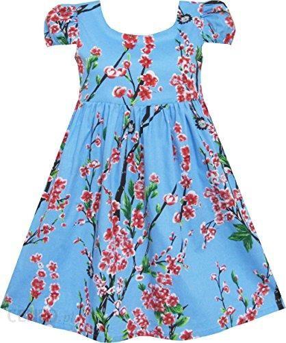 ce54e542ae Amazon Sukienka dla dziewczynki chiński drukowanie księżniczka Niebieski  kwiat śliwy