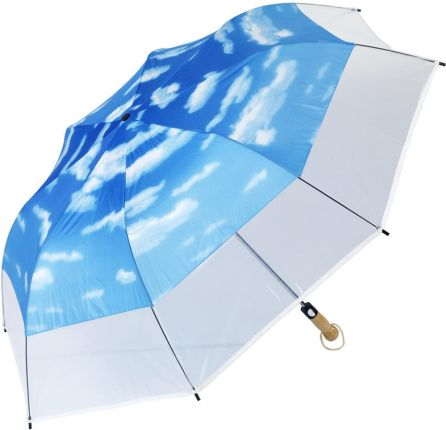 6ce8010bd120a Długa parasolka damska stokrotki, brązowa rączka, automat - Ceny i ...