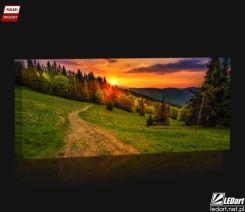 Leśna Droga Obraz Podświetlany Led Opinie I Atrakcyjne Ceny Na