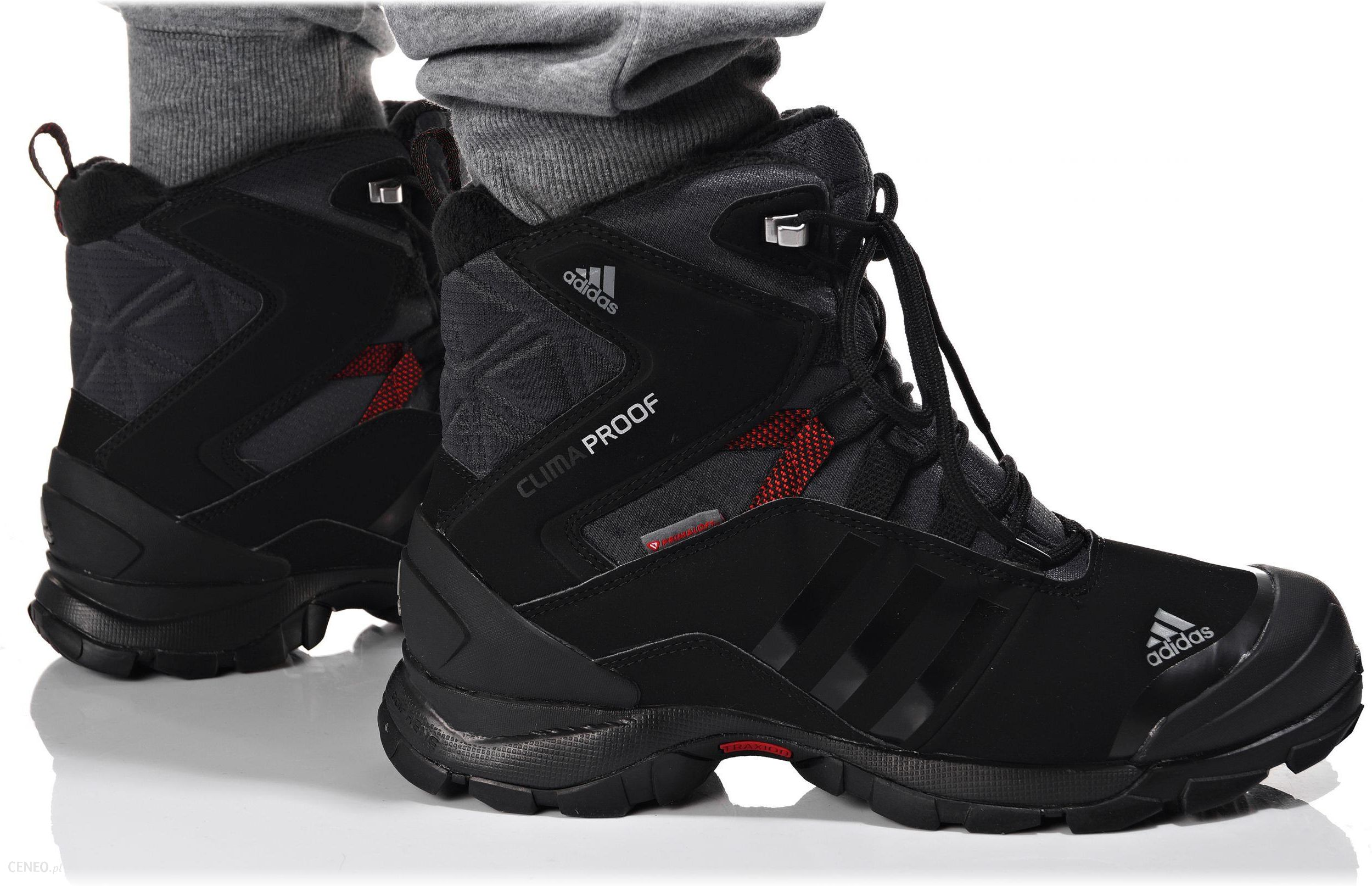 Buty Adidas WINTER HIKER SPEED CP PL (V22179)