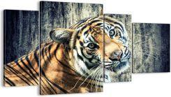 Obraz Na Płótnie Tygrys Natura Kot Dl120x70 2464 Opinie I
