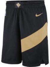 Nike Spodenki męskie NBA City Edition Swingman (Toronto Raptors) czarny AJ1260010 Ceny i opinie Ceneo.pl