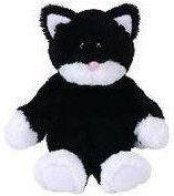 Czarno Biały Kot Najlepsze Oferty Na Ceneopl