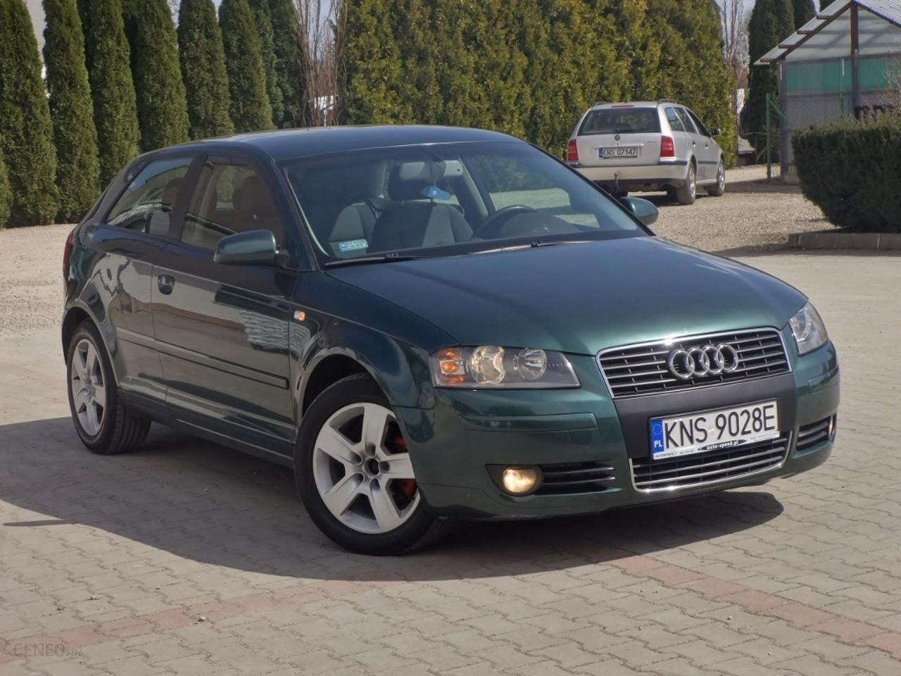 Audi A3 8p 2003 Diesel 105km Hatchback Zielony Opinie I Ceny Na Ceneopl