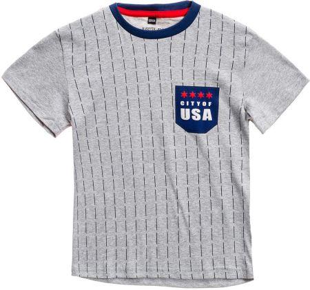bd9436cb6 T-shirt chłopięcy z nadrukiem szary Denley T3305 Denley. Bluzka dziecięca  ...