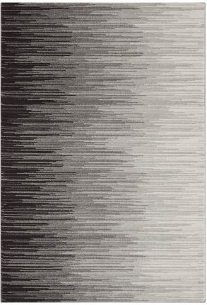 Szare Dywany I Wykładziny Dywanowe Arte Wymiary 120x170 Cm