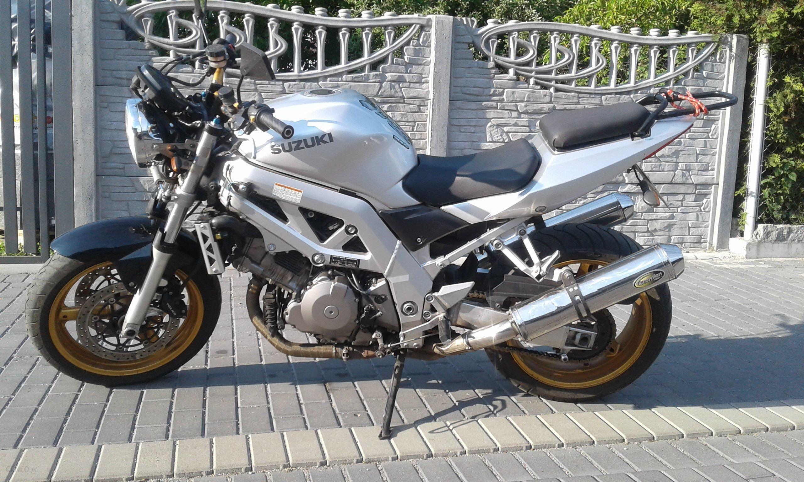 Suzuki Sv 1000 Opinie I Ceny Na Ceneo Pl