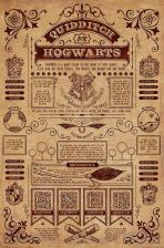 Harry Potter Quidditch Plakat Filmowy