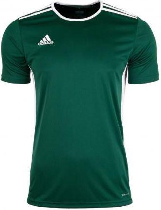 1c0ea11f1eed3 Adidas Koszulka Męska T-shirt Entrada 18 CD8358
