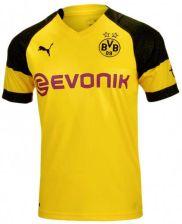 e014446e2 Puma Koszulka Borussia Dortmund Home Replica 753310-01