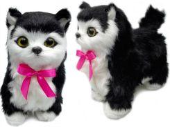 Interaktywny Kot Oferty Ceneopl