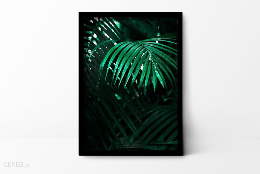 Plakaty I Spółka A3 Plakat Botaniczny Opinie I Atrakcyjne Ceny Na Ceneopl