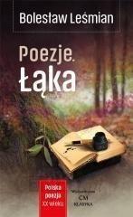 Polska Poezja Xxw Poezje łąka Bolesław Leśmian
