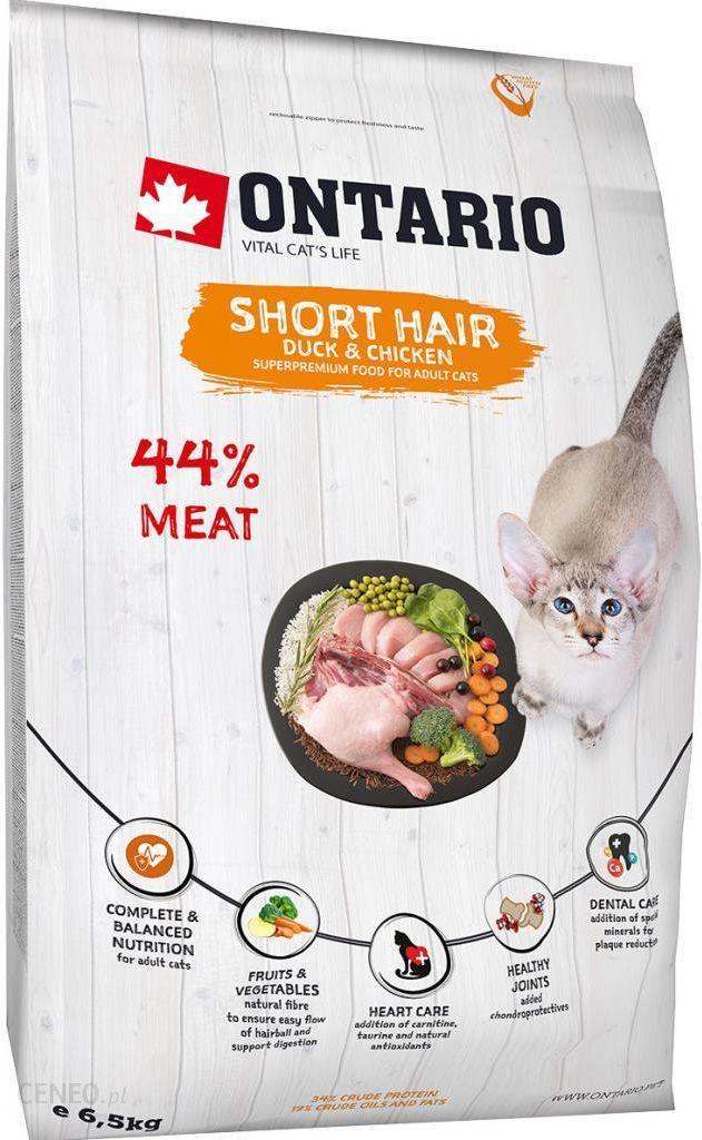 Ontario Short Hair 6,5kg