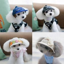 buty do biegania najlepszy dostawca strona internetowa ze zniżką AliExpress Darmowa wysyłka Zwierzęta Kapelusze akcesoria Dla Zwierząt  czapka beret Pet Dog hat pluszowy Pies Pudel Hat hair 11 Style Baseball Hat  Dla ...