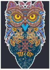 Decormint Plakat Samoprzylepny Sztuki Tatuażu Sowa Kolor Sowa W Etnicznym Stylu T Shirt W Stylu Celtyckim Sowa Tatuaż Symbol M 29x42cm Opinie I