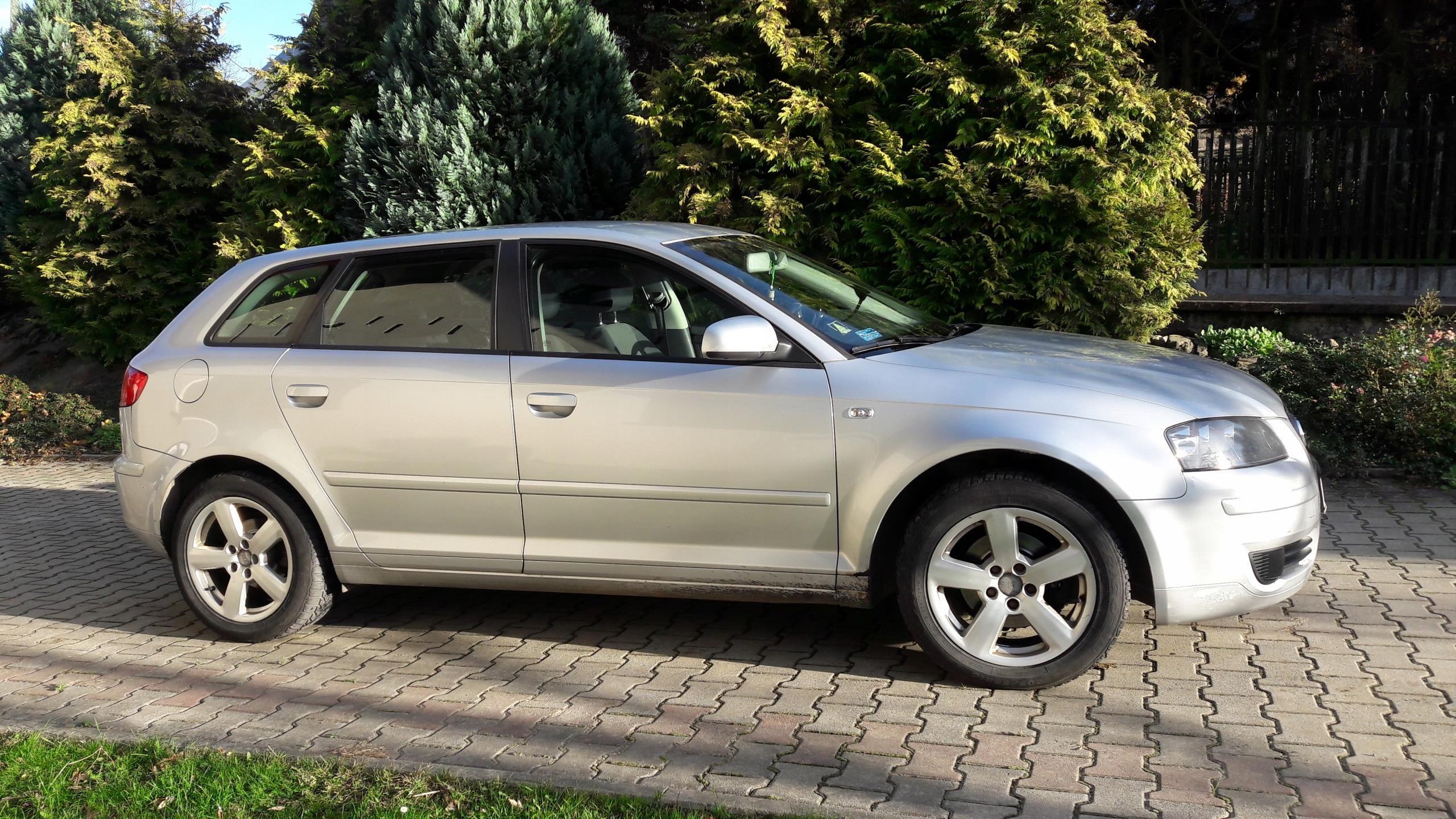 Audi A3 Sportback 1 9 Tdi 105km 2006 Opinie I Ceny Na Ceneo Pl
