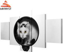 Koty Czarno Białe Sklepy Zagraniczne Ceneopl