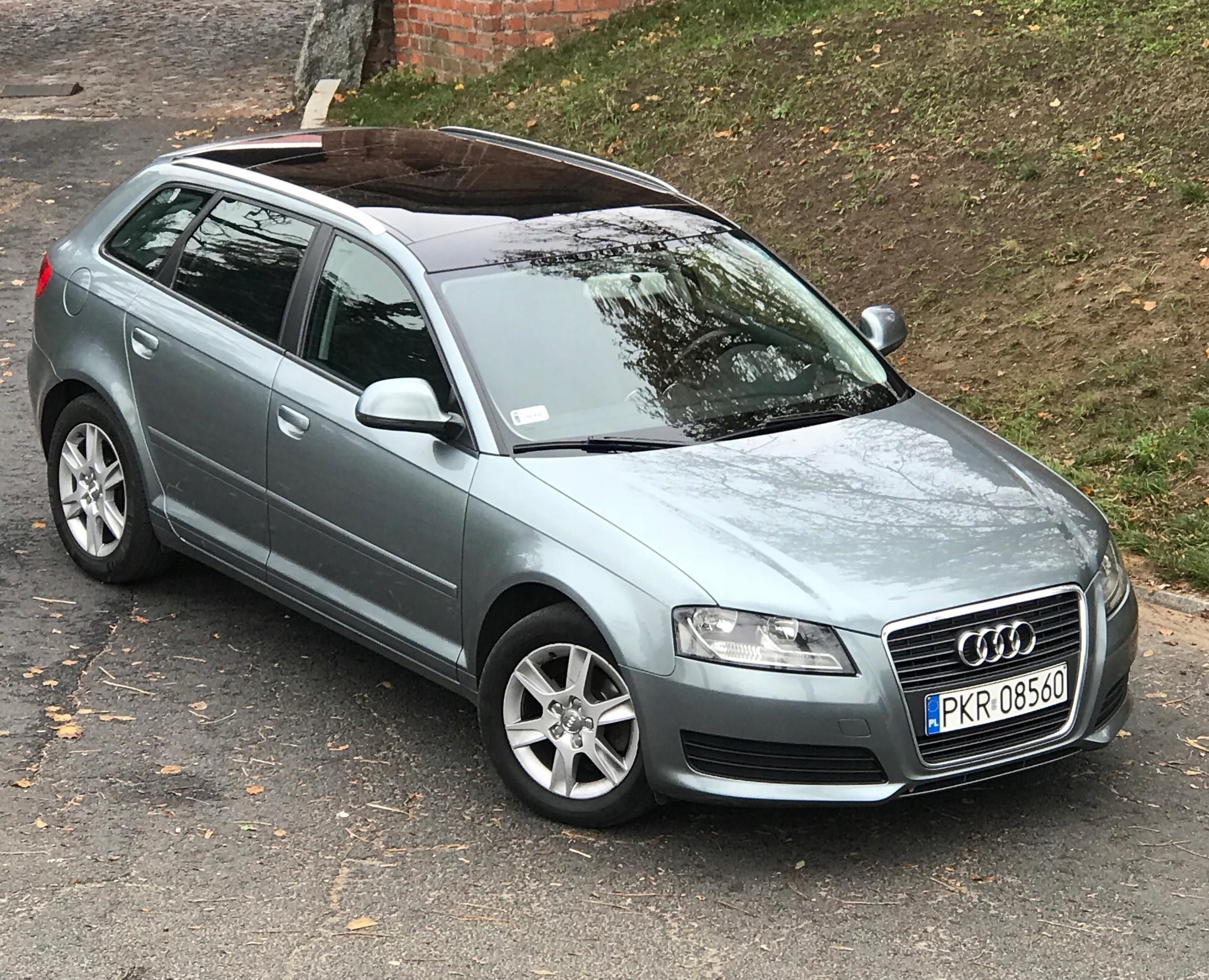 Audi A3 1 6 Tdi Bezwypadkowy Top Stan 5 Drzwi Opinie I Ceny Na Ceneo Pl