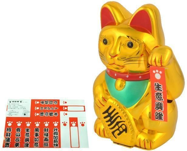 Iso Trade Kot Chinski Zloty Opinie I Atrakcyjne Ceny Na Ceneo Pl