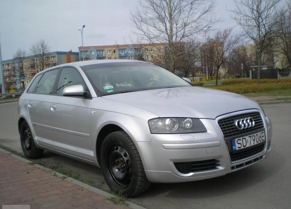 Audi A3 2006 Rok 2 0 Tdi 170km 5 Drzwi Pl Opinie I Ceny Na Ceneo Pl