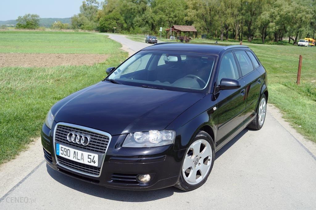 Audi A3 1 9tdi 105km 5 Drzwi Ideal Oryginal Opinie I Ceny Na Ceneo Pl