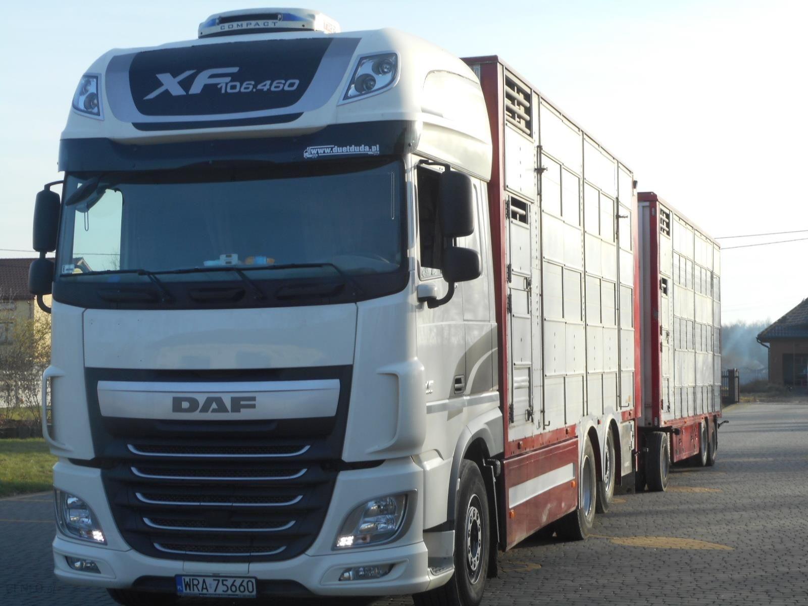 Zupełnie nowe DAF 460 EURO 6 DO ŻYWCA ZESTAW WAGA!!! - Opinie i ceny na Ceneo.pl PT85