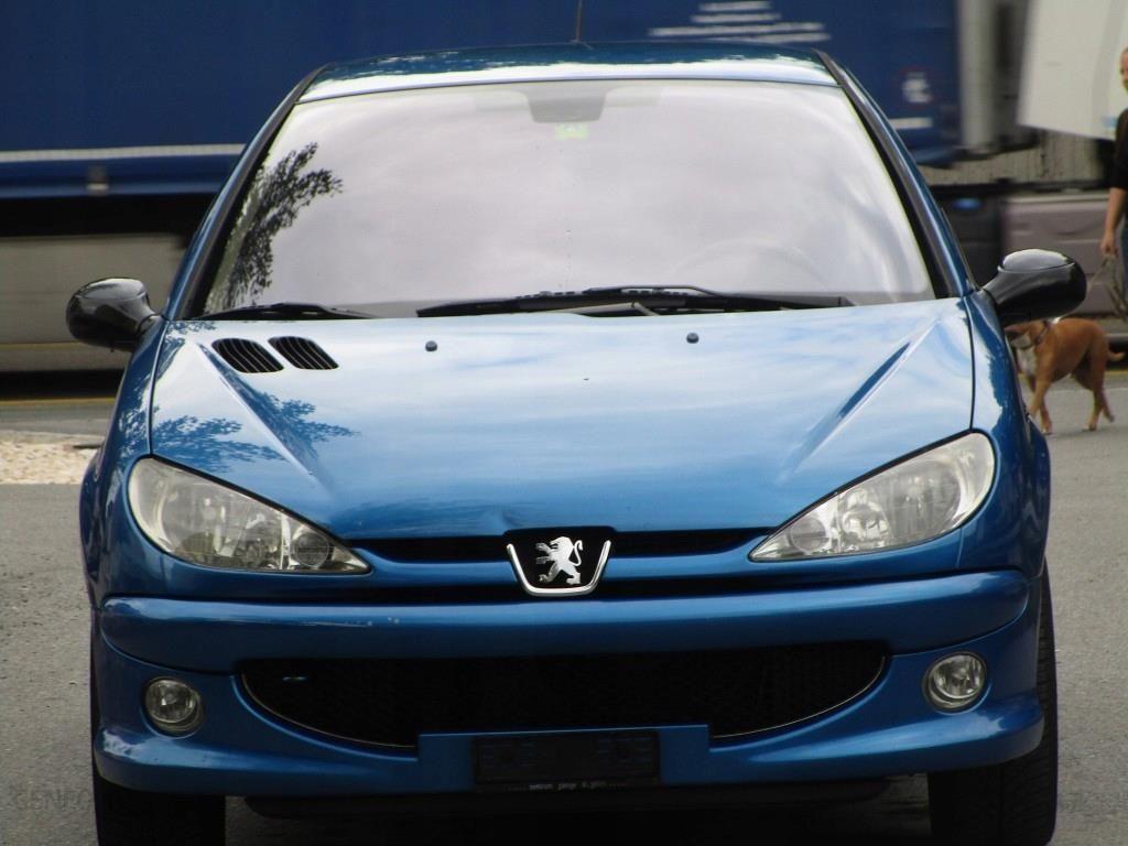 Peugeot 206 Rc 2 0 177 Koni Opinie I Ceny Na Ceneo Pl
