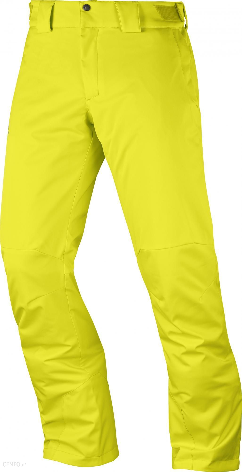 b178a5cdffab52 Salomon Męskie Spodnie Narciarskie Stormpunch Pant M Sulphur Spring -  zdjęcie 1