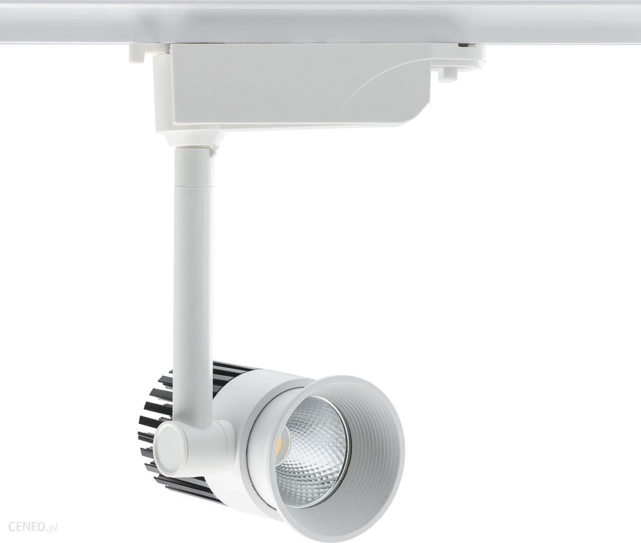 Demarkt Trade Mark Oświetlenie Sufitowe Punktowe Techno 550010101 Opinie I Atrakcyjne Ceny Na Ceneopl