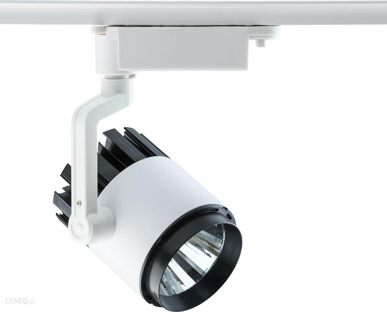 Demarkt Trade Mark Oświetlenie Sufitowe Punktowe Techno 550011001 Opinie I Atrakcyjne Ceny Na Ceneopl