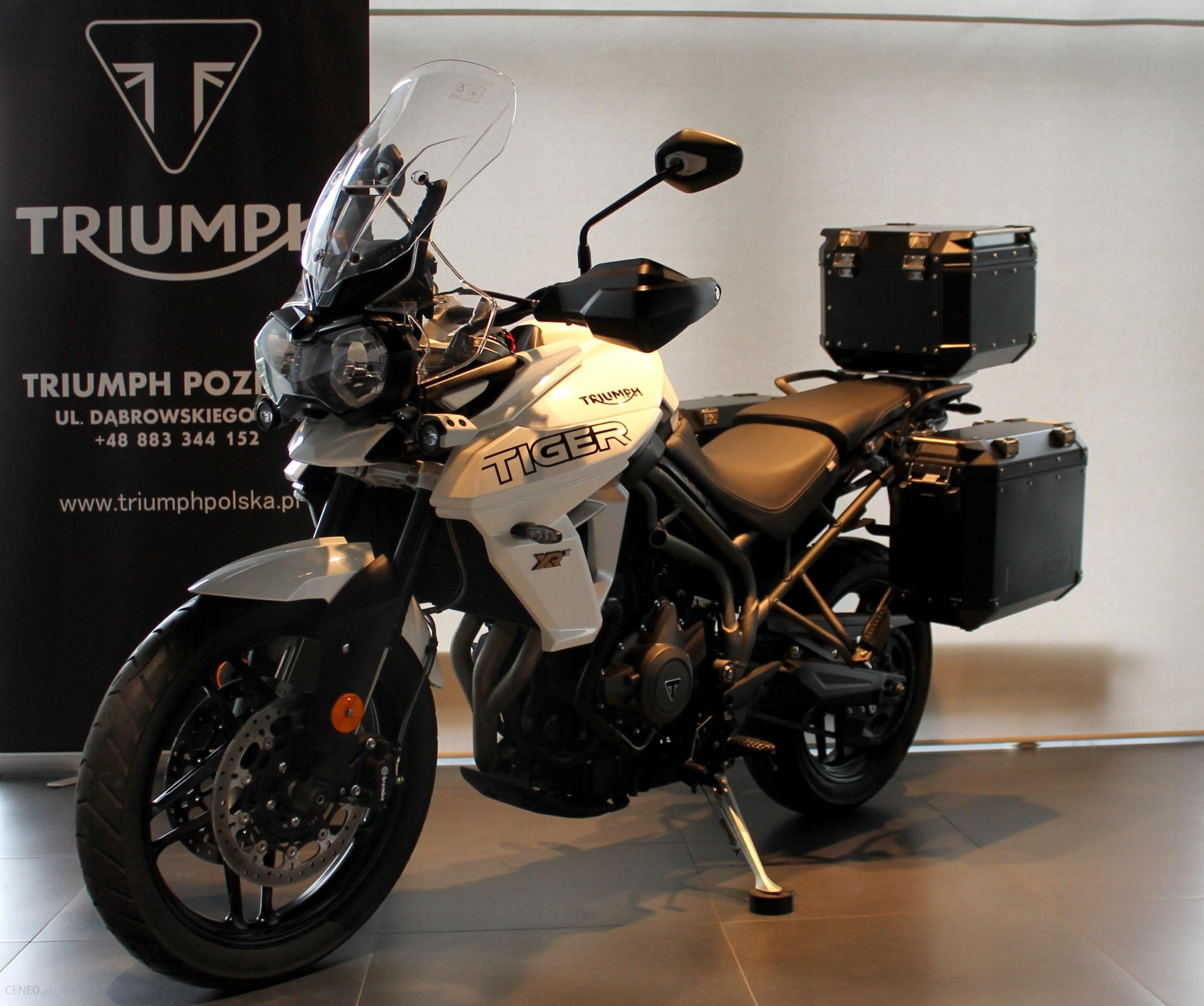 Triumph Tiger 800xrx Demo Triumph Poznan Opinie I Ceny Na Ceneo Pl