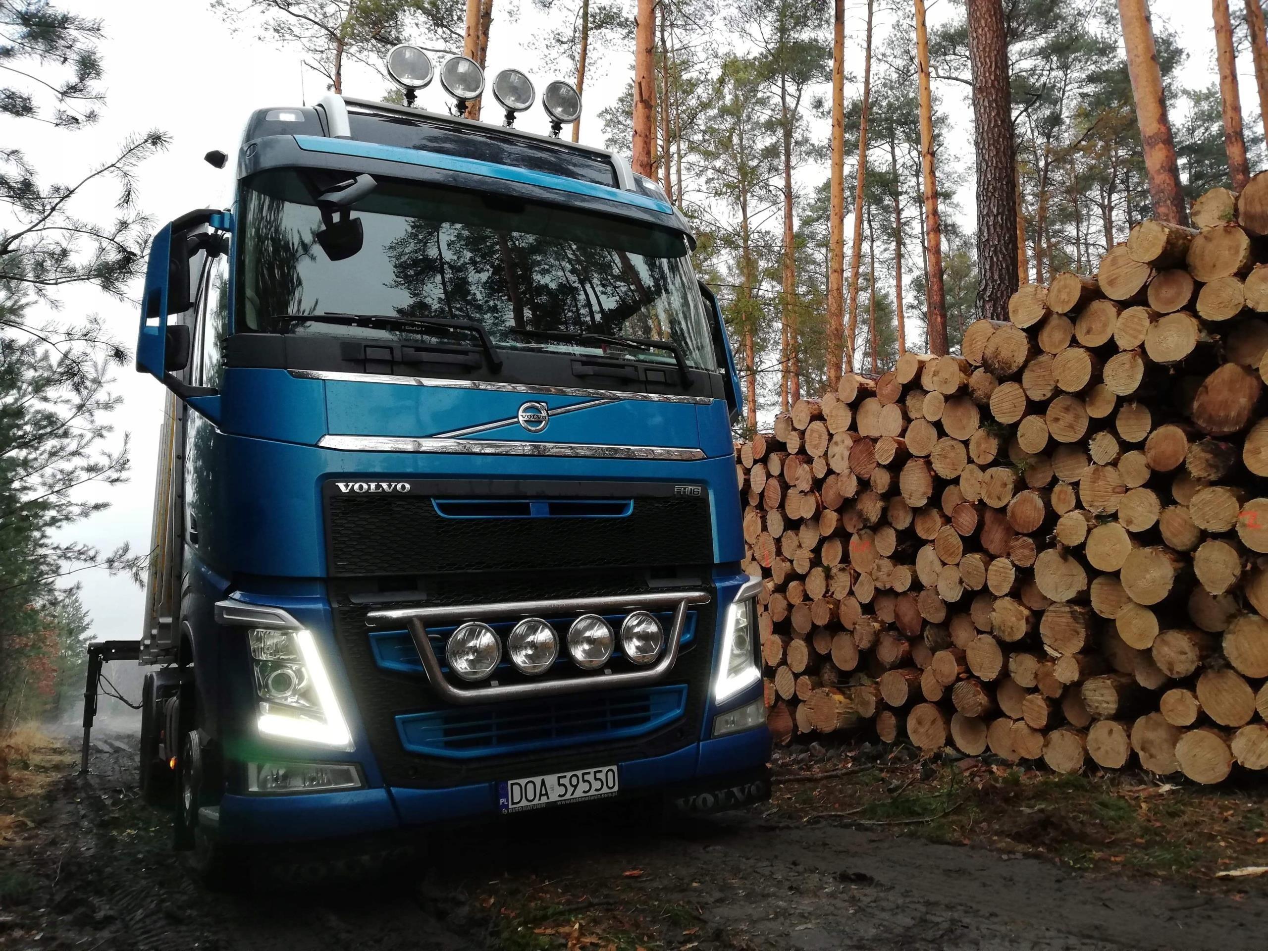 Zaktualizowano Volvo FH 16 do drewna do lasu - Opinie i ceny na Ceneo.pl TA67
