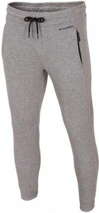 Amazon Puma Style Athletic Sweat Pants spodnie męskie, szary, M Ceneo.pl