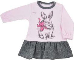 5b2d256930ed0e Sukienka niemowlęca Koala Anitka różowo-szara
