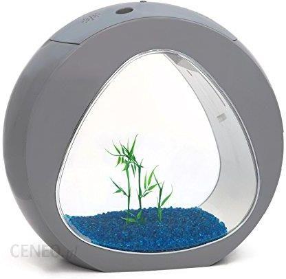 Amazon Małe Nano Curve Ryby Akwarium Tank Zimna Woda Tropical Oświetlenie Led 6l Lub 135l Szary Ceneopl