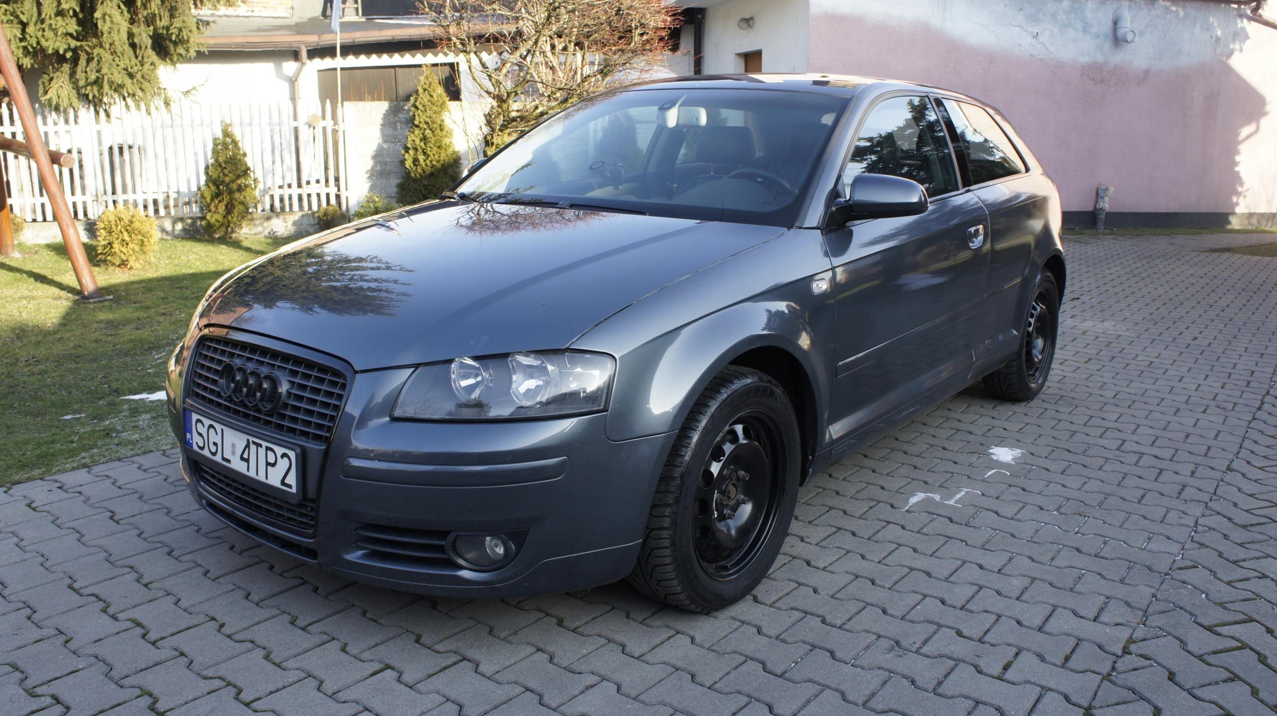 Audi A3 8p 20 Tdi Bkd Skóra S Tronic Ambientebose Opinie I Ceny