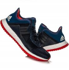 a42164377b8be Buty męskie Adidas Pure Boost ZG Trainer AQ5038