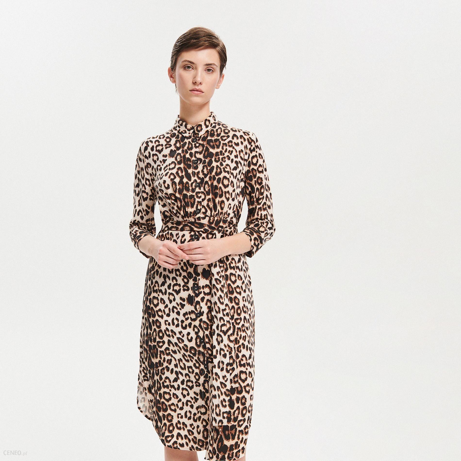 b6b70d79bf Reserved - Sukienka z motywem zwierzęcym - Wielobarwn - Ceny i ...