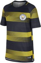 Nike Męska Dresowa Bluza Piłkarska Manchester City Fc Dri Fit Squad Żółć Ceny i opinie Ceneo.pl