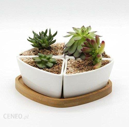 Amazon T4u Ceramiczne Doniczki Do Sukulentów Bambusowa Podstawka Small Ceneopl