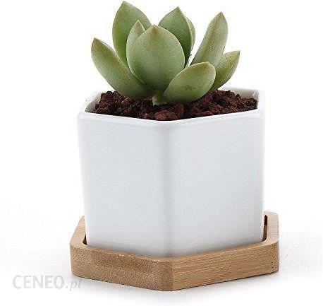 Amazon T4u Ceramiczne Doniczki Do Sukulentów Bambusowa Podstawka Xxs Ceneopl