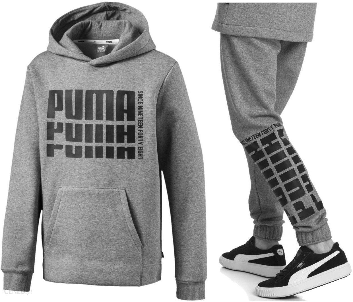 Dres Puma Kompletny Męski Sport Spodnie Bluza XL Ceny i opinie Ceneo.pl