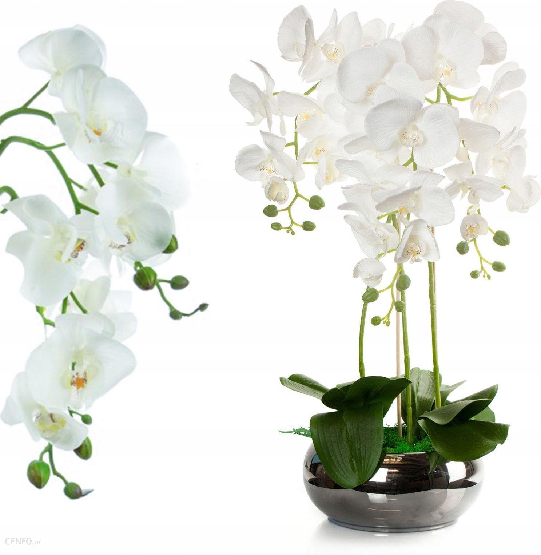 Sztuczny Storczyk Biały Kwiaty Sztuczne Silikon Opinie I Atrakcyjne Ceny Na Ceneopl