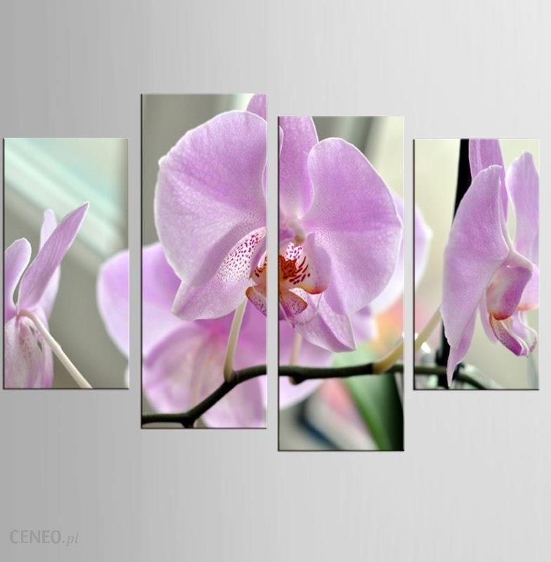 Aliexpress 4 Panel Różowa Magnolia Roślin Art Mural Druk Na Płótnie Home Decoration Farby ścienne Zdjęcia Plakatu I Druku Ceneopl